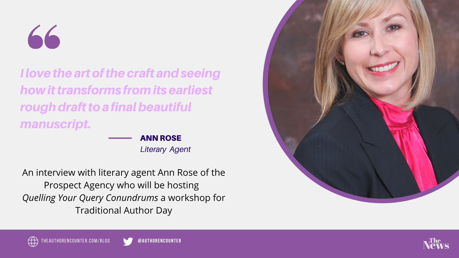 blog banner for the interview with author and literary agent ann rose